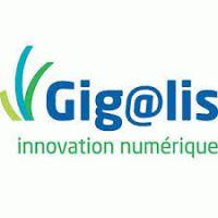 L'animation du programme GEOPAL est confiée au syndicat mixte GIGALIS.
